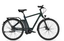raleigh newgate homme